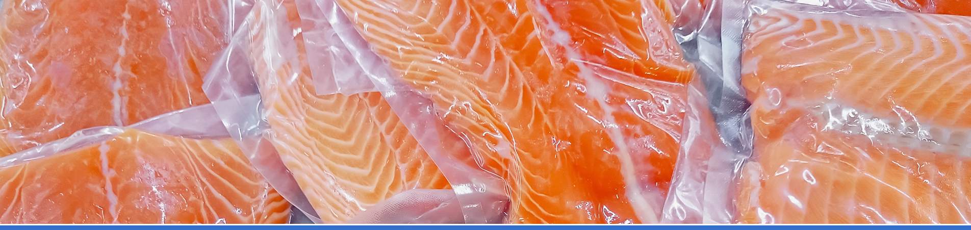 Emme Gel distribuzione surgelati - pesce surgelato