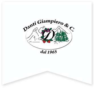 Emme Gel distribuzione surgelati - danti giampiero & c.