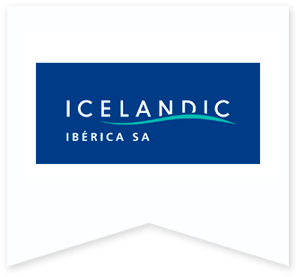 logo icelandic
